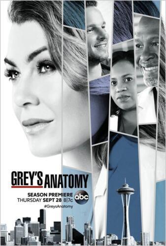 Grey/'s Anatomy Season 14 Group Cast 36x24 Art Print Poster