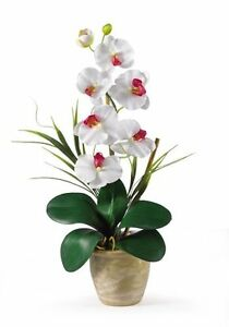 Nearly Natural 1016-WH Phalaenopsis Silk Orchid Flower Arrangement- White NEW