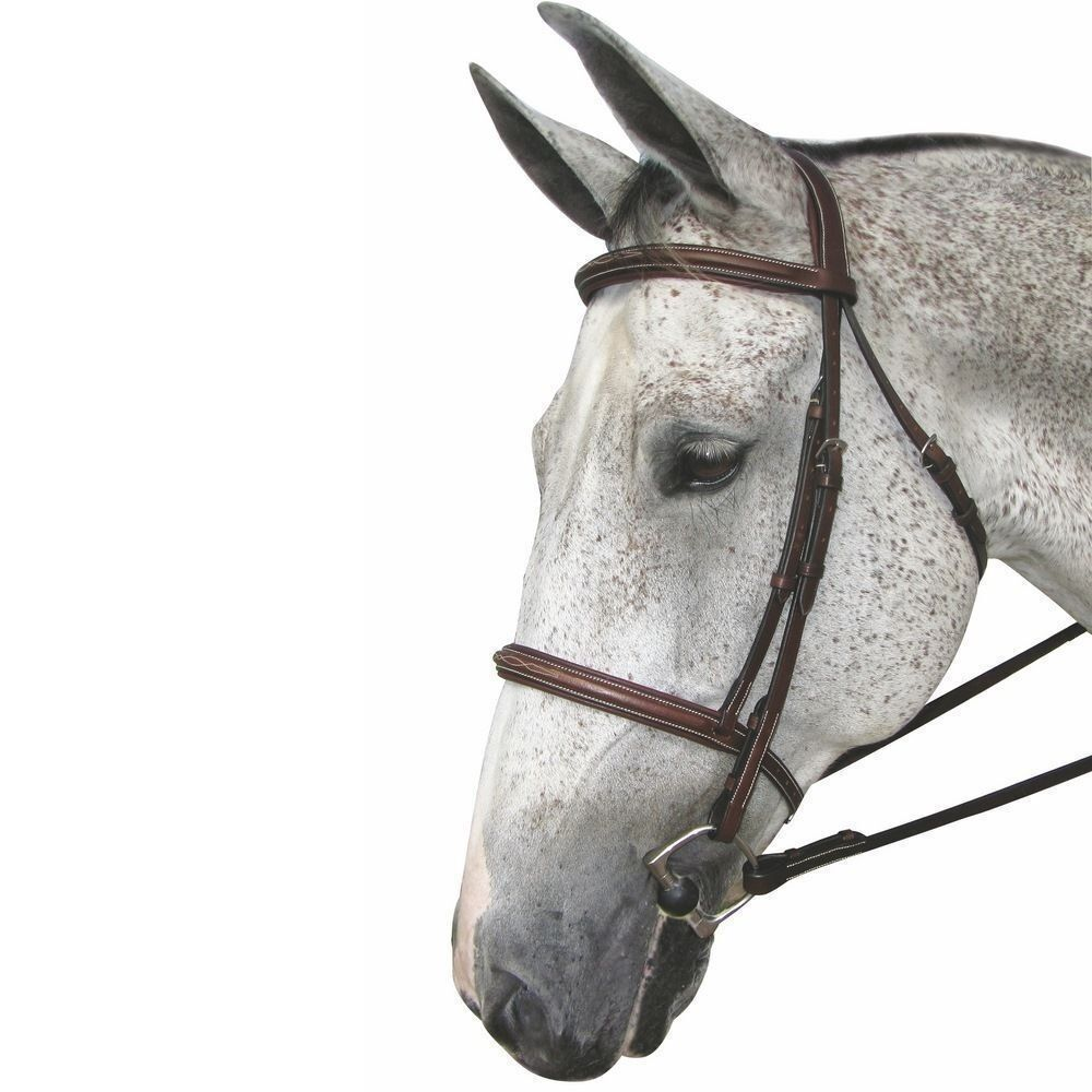 HDR Mono Crown Fancy Padded Bridle  - 5099-08 - Brown- Cob, Horse & Oversize