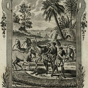 South-Africa-034-hottentots-034-agriculture-corn-huts-1778-nice-old-engraved-print