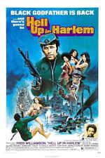 1975 REDNECK COUNTY VINTAGE DRAMA FILM MOVIE POSTER PRINT 36x24 9 MIL PAPER