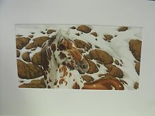 Bev Doolittle Hide and Seek Cameo A, Mint Condition