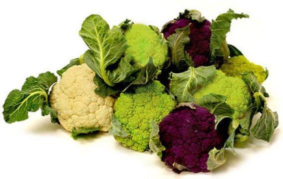 CAULIFLOWER Heirloom Mix' 150 seeds mixed heritage vegetable garden NON GMO