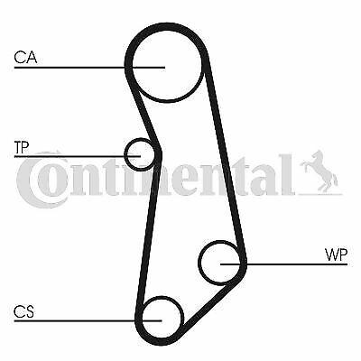Continental CTAM Pompe à eau courroies ct1114wp1 pour FIAT