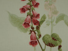 "SANDERSON CURTAIN FABRIC DESIGN ""Foxgloves"" 3.1 METRES BUTTERMILK & RASPBERRY"