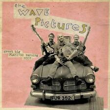 the Wave Pictures - Great Big Flamingo Burning Moon - CD