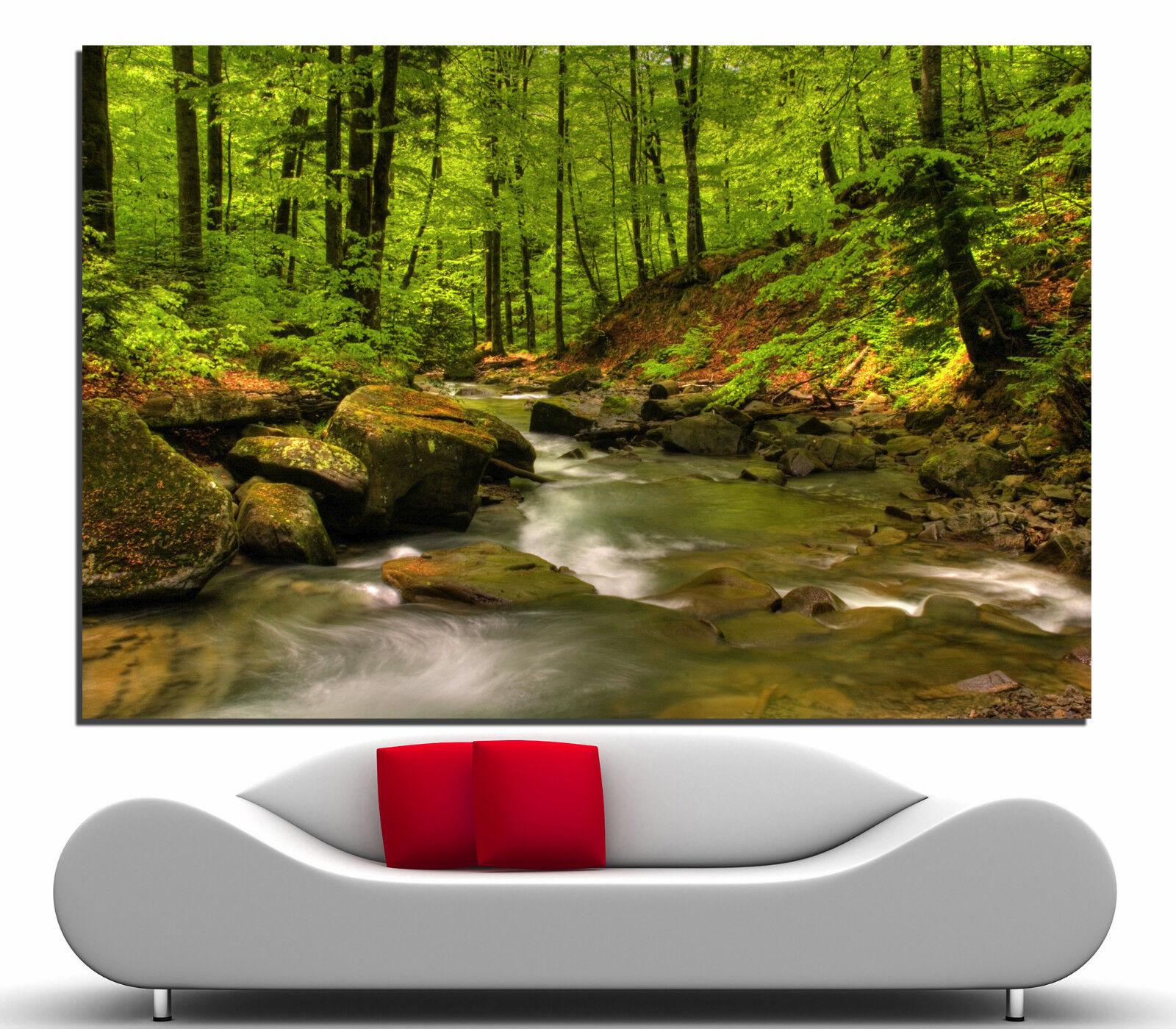 Forest Canvas Print Home Decor Wall Art Landscape Tree Prints Photo Picture 2 1