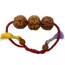 Rudraksha Combination For Divine Success 9,13,17 Mukhi Java Certified-Bracelet