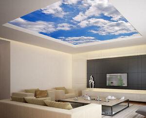 Ceiling sticker removable vinyl mural clouds air cupola for Air conditionn mural
