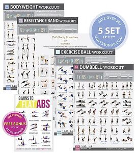 gym home exercise posters set of 5 workout chart large 19 x27 now