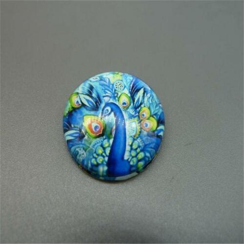 25mm Round Handmade Dragonfly Butterfly Photo Glass Dome Cabochon Cameo Cabs