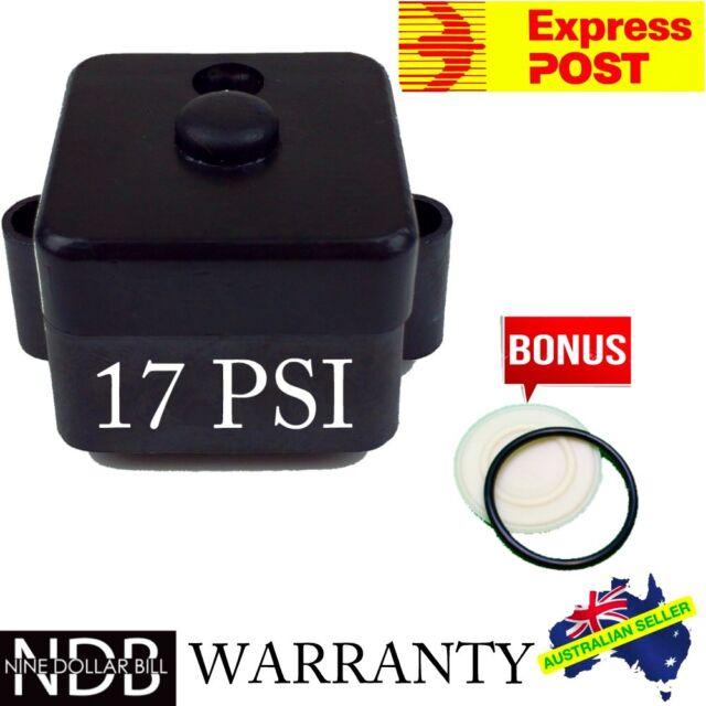 Water Pump Pressure Switch 17 PSI Caravan 12v 24v Flowpump FAST POST WARRANTY