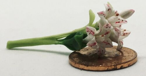 1:12 Scale Set of 3 White Lilly Style Flowers /& a Bud tumdee Dolls House
