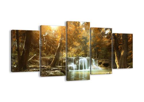 IMAGE SUR TOILE Cadre parc cascade eau 3789 FR