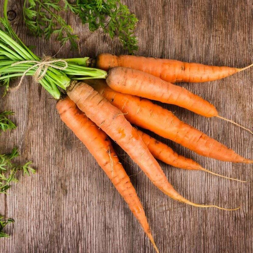 CARROT 'All Season' 250 Seeds Popular Vegetable Garden Slow Bolt All Year Around