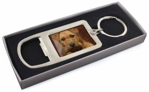 AD-LT2MBO Lakeland Terrier Dog Chrome Metal Bottle Opener Keyring in Box Gift M