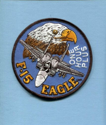 F-15 F-15E EAGLE 1 ONE FLIGHT HOURS USAF TFS FS Fighter Squadron Patch