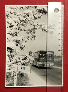 altes-Foto-Weissig-bei-Dresden-um-1970-IKARUS-Bus-66253