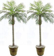 2 Artificial Phoenix Palm Tree 7' Plant Porch In Basket Pot Areca Topiary Sago
