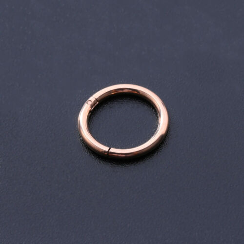 Details about  /8 Pcs 16G Stainless Steel Nose Rings Women Helix Earrings Tragus Septum Piercing