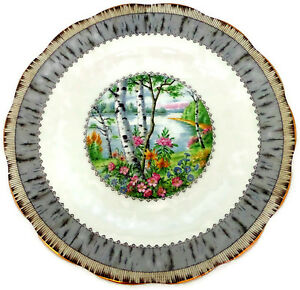 Royal-Albert-Silver-Birch-Salad-Plate-8-1-8-034-Bone-China-Made-in-England