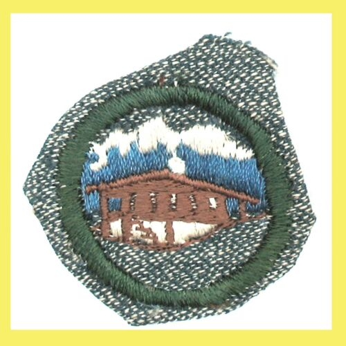 WORLD NEIGHBORS 1947 ONLY Girl Scout Silver Grn NEW Badge Our Chalet Excellent