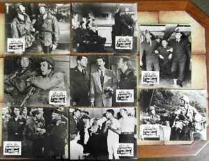 8-Original-Aushangfotos-Schrecken-der-Division-Jerry-Lewis-Dean-Martin-s-w