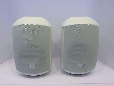 Apart Audio MASK6TW 6 5