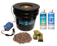 Hydroponic System - Complete Grow System - Dwc Hydroponic Kit