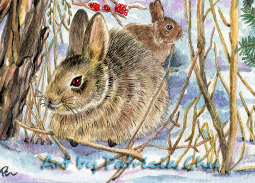 "ACEO LE Art Card Print 2.5/""x3.5/"" /"" Bunnies In Winter Snow /"" Art by Patricia"