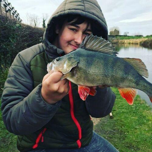 PIKE//BASS FLY custom flash baitfish 6 to 7 inch fly made in scotland