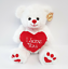 VALENTINES-DAY-GIFT-PRESENT-Her-Him-Wife-Partner-Love-Romantic-Valentine-039-s thumbnail 50