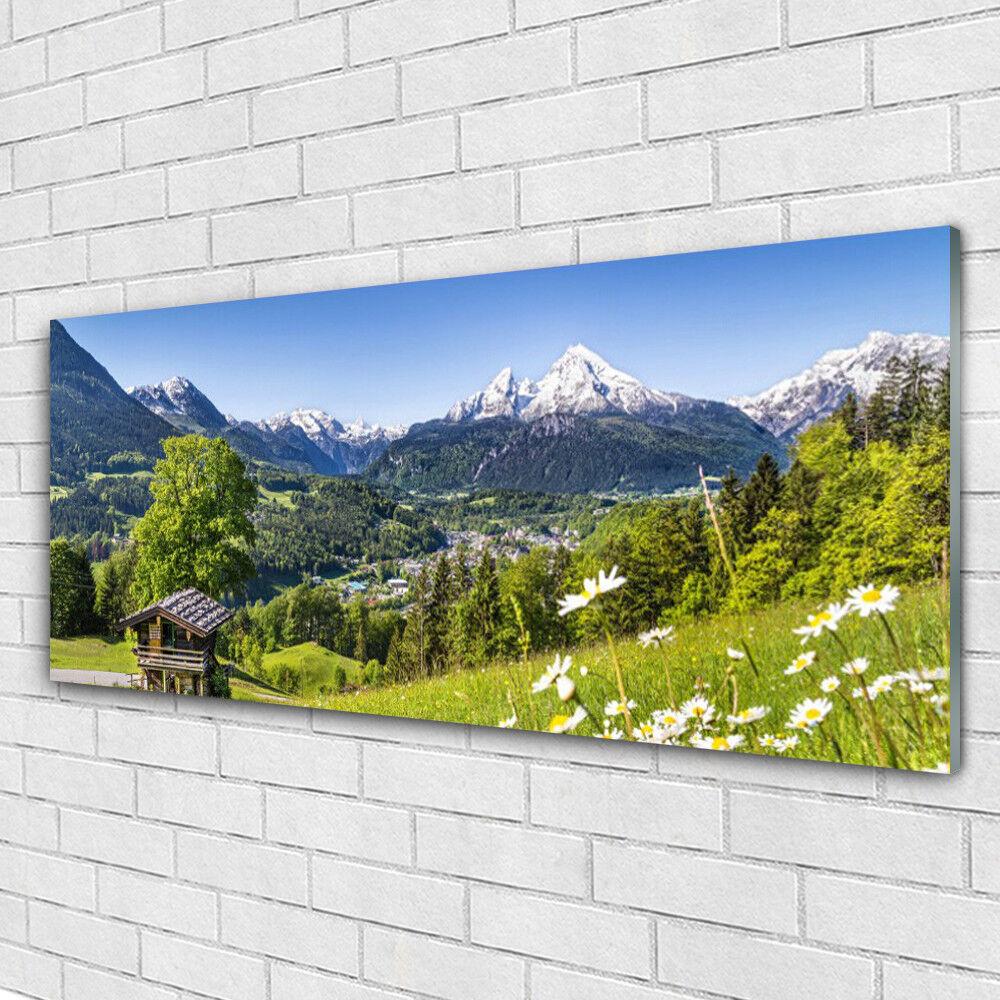 Impression sur verre Image tableaux 125x50 Nature Montagnes Champs