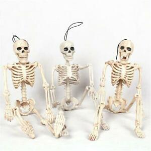 Halloween-Scary-Human-Skull-Skeleton-Prop-Full-Body-Party-Decoration-40cm-Size