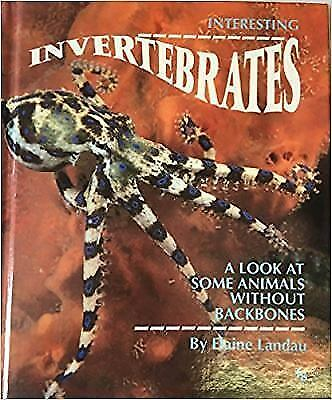 Interesting Invertebrates : A Look at Some Animals Without Backbones