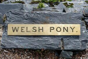 WELSH-PONY-brass-nameplate-from-2013-800mm-x-125mm-7kg-in-weight