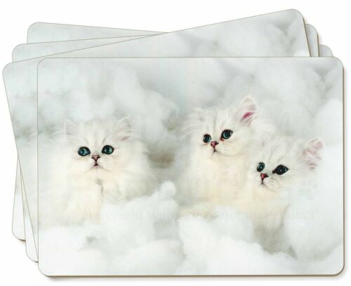 White Chinchilla Kittens Picture Placemats in Gift Box AC-44P