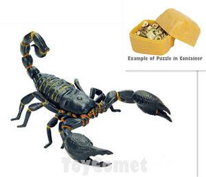 Details about Scorpion Desert Creatures Animal 4D 3D Puzzle Realistic Model  Kit Toy