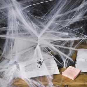 HALLOWEEN SPIDER WEBS & WEBBING Spiders - FULL 12 Pack New