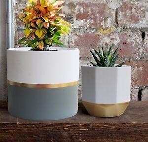 White Ceramic Flower Pot Garden
