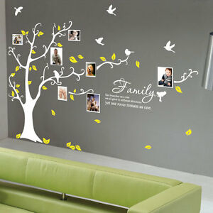Family-Photo-Tree-Bird-Wall-Stickers-Wall-Decals-Wall-Quotes-Stickers