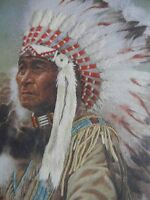 Completed Julie Kramer Cole Colorart Crewel Buffalo Caller Indian Chief 16x20