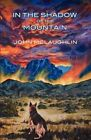 In the Shadow of the Mountain by John D McLaughlin (Paperback / softback, 2012)