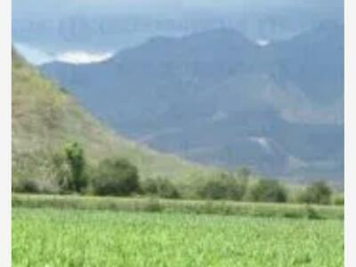 Terreno en Venta en Ixtlahuacan ideales para Ganaderia