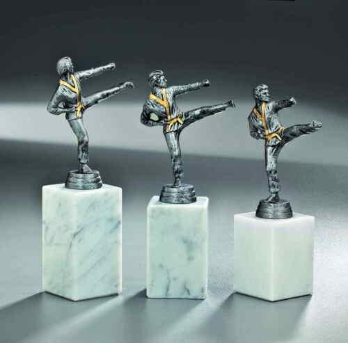 Sport Figur Karate Pokal Preis Auszeichnung incl.echter Gravur