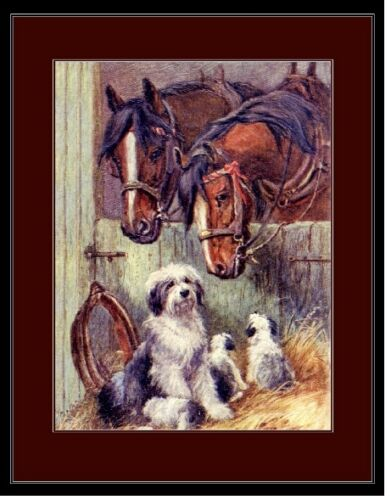 Pups Horses Art Picture English Poster Print Old English Sheepdog Mother Dog
