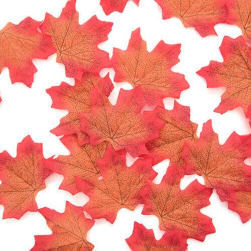 50 Teile Kunstseide Ahornblatt Herbst Blätter für Hochzeit Garten Dekor-Uk
