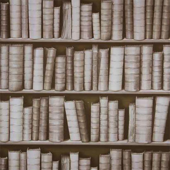 3D EFFECT SEPIA LIBRARY BOOKS BOOKCASE LUXURY FEATURE DESIGNER WALLPAPER F92307