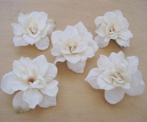 "5 Piece Lot 2.5/"" Cream White Apple Blossoms Flower Hair Clips,Wedding,Luau"