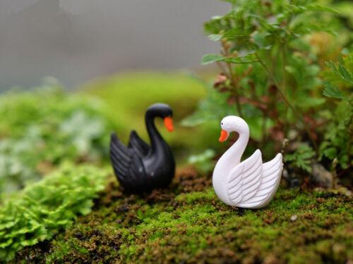 10pcs cygnes Miniature Jardin Pelouse Ornement Décoration figurine Do It Yourself Yard Handmade